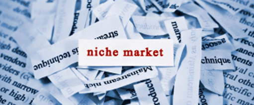 Image for Choose a Niche and Dominate It.